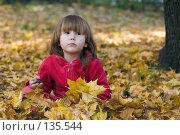 Купить «Ребенок одетый в красное с печальным видом сидит в кленовой листве», фото № 135544, снято 1 октября 2007 г. (c) Ольга Сапегина / Фотобанк Лори