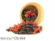 Купить «Ягоды красной и черной смородины высыпаются из корзины», фото № 135964, снято 1 июля 2007 г. (c) Елена Блохина / Фотобанк Лори