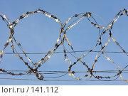 Купить «Колючая проволока», фото № 141112, снято 20 ноября 2007 г. (c) Argument / Фотобанк Лори