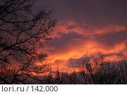 Купить «Небо декабря», фото № 142000, снято 7 декабря 2007 г. (c) Екатерина Соловьева / Фотобанк Лори
