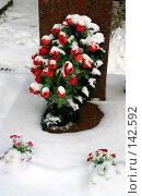 Купить «Цветы на могиле.Кунцевское кладбище. Москва», фото № 142592, снято 2 декабря 2007 г. (c) Николай Коржов / Фотобанк Лори