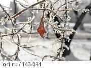 Купить «Дыхание севера...», фото № 143084, снято 5 декабря 2007 г. (c) Круглов Олег / Фотобанк Лори