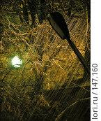 Купить «Графика снегопада в свете фонарей», фото № 147160, снято 15 октября 2018 г. (c) Светлана Кучинская / Фотобанк Лори