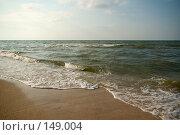 Купить «Пляж близ Голубицкой (Азовское море)», фото № 149004, снято 9 августа 2007 г. (c) Петухов Геннадий / Фотобанк Лори