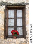 Купить «Цветок в горшке на окне», фото № 150528, снято 20 мая 2007 г. (c) Максим Горпенюк / Фотобанк Лори