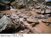 Купить «Река Руфабго. Кавказский заповедник», фото № 151776, снято 10 августа 2007 г. (c) Петухов Геннадий / Фотобанк Лори