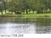 Купить «Пейзажный парк и  Большой пруд. Царское село. Санкт- Петербург», эксклюзивное фото № 158264, снято 16 сентября 2007 г. (c) Ирина Мойсеева / Фотобанк Лори