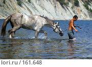 Купить «Купание лошади», фото № 161648, снято 10 августа 2004 г. (c) Морозова Татьяна / Фотобанк Лори