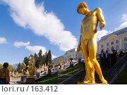 Купить «Санкт-Петербург. Петергоф. В нижнем парке», эксклюзивное фото № 163412, снято 18 мая 2007 г. (c) Александр Алексеев / Фотобанк Лори