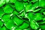 Ярко-зеленые листья, фото № 164064, снято 1 июля 2007 г. (c) chaoss / Фотобанк Лори