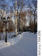 Купить «В городском парке», фото № 164096, снято 21 декабря 2007 г. (c) Константин Порядин / Фотобанк Лори