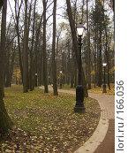 Купить «Осенний сумрак», фото № 166036, снято 27 октября 2007 г. (c) Розе Андрей / Фотобанк Лори