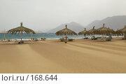 Купить «Пустой пляж. Ветер. Песок», фото № 168644, снято 7 апреля 2007 г. (c) Ann Perova / Фотобанк Лори