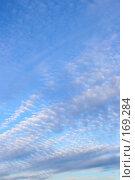 Купить «Облака», фото № 169284, снято 27 февраля 2020 г. (c) Роман Сигаев / Фотобанк Лори