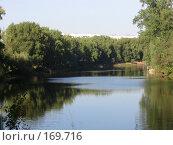 Река и лес летом. Стоковое фото, фотограф Светлана Белова / Фотобанк Лори