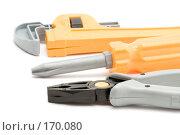 Купить «Игрушечный рабочий инструмент, крупный план», фото № 170080, снято 8 января 2008 г. (c) Угоренков Александр / Фотобанк Лори
