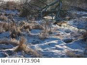 Купить «Хаос», фото № 173904, снято 8 января 2008 г. (c) Юрий Синицын / Фотобанк Лори