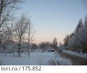 Купить «Закат», фото № 175852, снято 10 января 2008 г. (c) Cавельева Елена / Фотобанк Лори