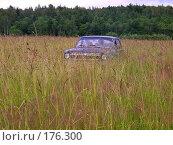 Купить «Родные просторы. Native open spaces.», фото № 176300, снято 11 июля 2007 г. (c) Александр Кокарев / Фотобанк Лори