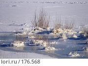 Купить «Ледяной пейзаж», фото № 176568, снято 12 января 2008 г. (c) Илья Малышев / Фотобанк Лори
