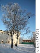 Купить «Две березки зимуют в Суздальском монастыре», фото № 177868, снято 7 января 2008 г. (c) Игорь Сидоренко / Фотобанк Лори