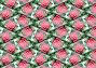 Фон - розовая роза с каплями воды отраженная в осколках стекла, фото № 178700, снято 23 августа 2017 г. (c) Анна Драгунская / Фотобанк Лори