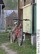 После прогулки (2006 год). Редакционное фото, фотограф Андрей Ерофеев / Фотобанк Лори