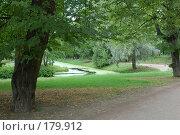 Купить «Парк», фото № 179912, снято 19 августа 2007 г. (c) Марина Дмитриевых / Фотобанк Лори