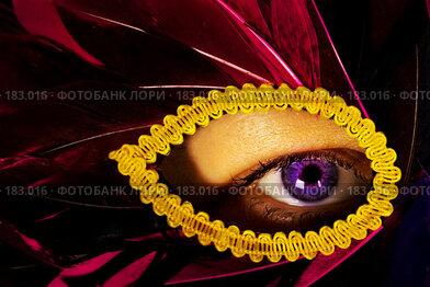 Купить «Глаз. Eye», фото № 183016, снято 14 ноября 2004 г. (c) Кравецкий Геннадий / Фотобанк Лори