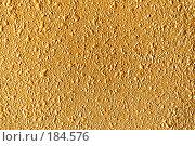 Купить «Шершавая структура золотого цвета», фото № 184576, снято 6 мая 2007 г. (c) chaoss / Фотобанк Лори