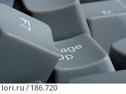 Купить «Россыпь серых клавиш от компьютерной настольной клавиатуры», фото № 186720, снято 6 сентября 2007 г. (c) Прозоровский Георгий / Фотобанк Лори