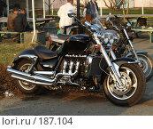 Купить «Мотоцикл Триумф Рокет», фото № 187104, снято 29 апреля 2007 г. (c) Антон Самбуров / Фотобанк Лори