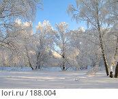 Купить «Зимнее утро», фото № 188004, снято 9 июля 2004 г. (c) Игорь Потапов / Фотобанк Лори
