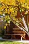Деревянная скамейка около входа в  дачный домик, фото № 191564, снято 26 сентября 2007 г. (c) Ирина Мойсеева / Фотобанк Лори