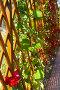 Декоративная деревянная решетка с вьющимися растениями, фото № 191616, снято 26 сентября 2007 г. (c) Ирина Мойсеева / Фотобанк Лори