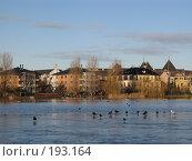 Купить «Дания. Озеро посреди Копенгагена. Птицы на льду и на воде. Дома на берегу.», фото № 193164, снято 31 декабря 2007 г. (c) Георгий Ильин / Фотобанк Лори