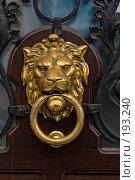 Купить «Дверная ручка в виде львиной головы», фото № 193240, снято 12 мая 2005 г. (c) Елена Прокопова / Фотобанк Лори