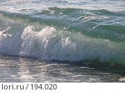 Купить «Морская волна», фото № 194020, снято 19 января 2008 г. (c) Golden_Tulip / Фотобанк Лори