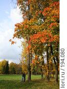 Купить «Осенний пейзаж (Пушкин)», фото № 194080, снято 23 сентября 2007 г. (c) Наталья Белотелова / Фотобанк Лори