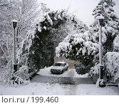 Купить «Под снежным покровом», фото № 199460, снято 25 мая 2018 г. (c) Игорь Струков / Фотобанк Лори
