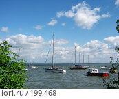 Купить «Яхты в море на стоянке у яхт-клуба в Таганроге», фото № 199468, снято 25 мая 2018 г. (c) Игорь Струков / Фотобанк Лори