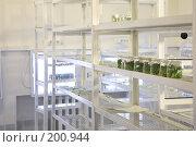Купить «Биологическая лаборатория», фото № 200944, снято 14 ноября 2007 г. (c) Коваль Василий / Фотобанк Лори