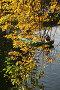 Центральный парк в  Санкт-Петербурге, фото № 201932, снято 30 сентября 2007 г. (c) Александр Секретарев / Фотобанк Лори