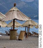 Купить «У моря», фото № 202060, снято 25 сентября 2007 г. (c) УНА / Фотобанк Лори