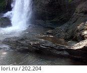 Купить «Прудик у подножия водопада», фото № 202204, снято 16 ноября 2005 г. (c) Марина Бандуркина / Фотобанк Лори