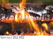 Купить «Огонь», фото № 202992, снято 31 июля 2007 г. (c) Ирина Игумнова / Фотобанк Лори