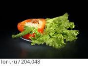 Купить «Листья салата и болгарский перец», фото № 204048, снято 17 февраля 2008 г. (c) Николай Федорин / Фотобанк Лори