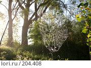 Купить «Паутина в лесу», фото № 204408, снято 15 ноября 2018 г. (c) Олег Кугаев / Фотобанк Лори