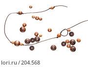 Купить «Простые деревянные бусы - бусины удерживаются в нужных местах узелками», фото № 204568, снято 17 февраля 2008 г. (c) Tamara Kulikova / Фотобанк Лори