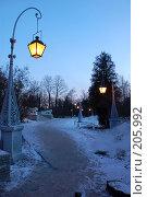 Купить «Елагин дворец. Подъездная аллея», фото № 205992, снято 16 февраля 2008 г. (c) Марина Дмитриевых / Фотобанк Лори
